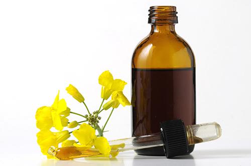 Molinard Parfums Grasse